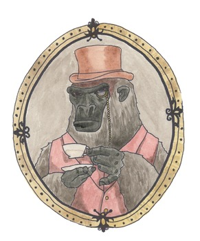 Animal Portraits - Gorilla