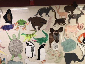 Animal Poster Presentation: Combining Taxonomy, Ecology, & Animal Science