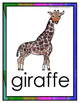 Animal Posters for Bulletin Boards or Word Cards - 51 Animals