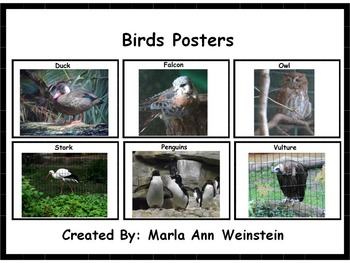 Animal Posters Bundle