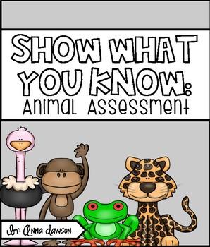 Animal Assessment