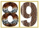 Animal Print Alphabet and Numbers With Symbols