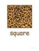 Animal Print Shape Signs