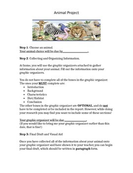 Animal Project Guidelines