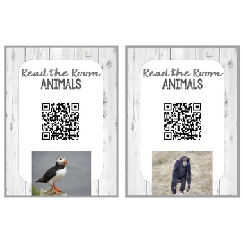 Animal QR Code - Read the Room