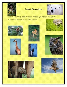 Animal Questions