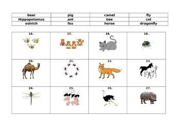 Animal Quiz 2