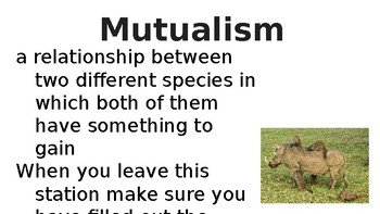 Animal Relationship Presentation