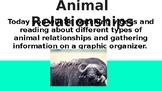Animal Relationship Presentation