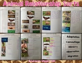 Animal Relationships Interactive Notebook Sorts