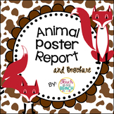Animal Report and Brochure