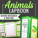 Animal Reports | A Lapbook & Research Project | Informational Writing