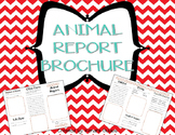 Animal Report Brochure