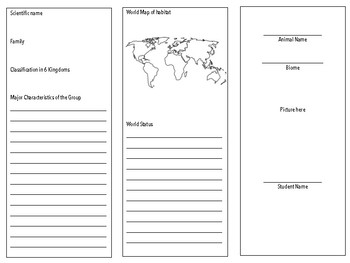 Animal Report Brochure