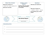 Animal Report Graphic Organizer