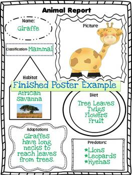 Animal Report Poster Form