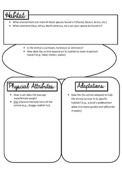 Animal Report Project Graphic Organizer and Project Rubric