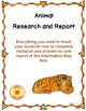 Animal Report Research Project