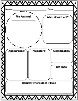 Animal Report Template