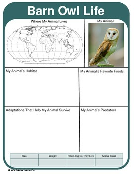 Animal Report Template:   Adaptations, Geography, Predators & More