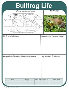 Animal Report Template: Adaptations, Geography, Predators U0026 More