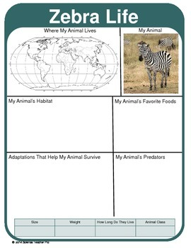 Animal Report Template:   Adaptations, Geography, Predator