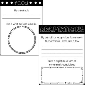 Animal Report Template Freebie By First Grade Roars  Tpt
