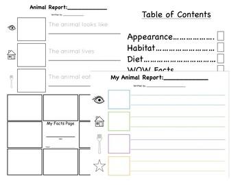 Animal Report Templates