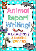 Animal Report Writing (Planning Templates & Info Sheets)