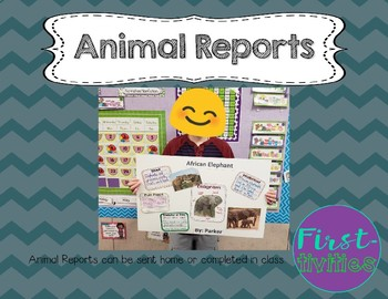 Animal Research Report {EDITABLE}