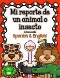 Animal Report in Spanish & English