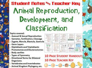 Animal Reproduction, Development, Classification Notes Han