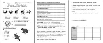 28 Classification Review Worksheet Answers - Free ...