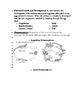 Animal Reproduction and Development Notes Word Document