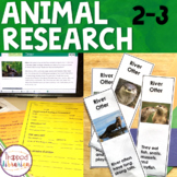 Animal Research:  Second & Third Grades