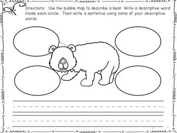 Bears-Animal Research Report