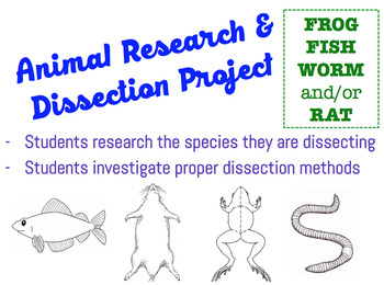 Animal Research & Dissection Project