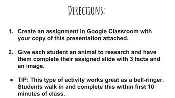 Animal Research: Google Slides Template!