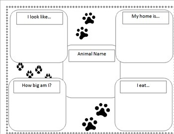 Animal Research Project Graphic Organizer Template By border=