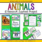 Animal Research Report Lapbook Project - 3rd, 4th, 5th grade (Common Core)