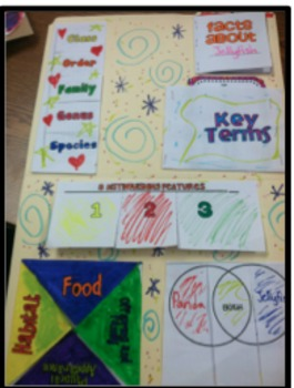 Animal Research Lapbook and Foldables
