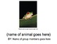 Animal Research Outline and PowerPoint Template