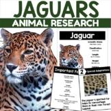 Animal Research Packet: Jaguars