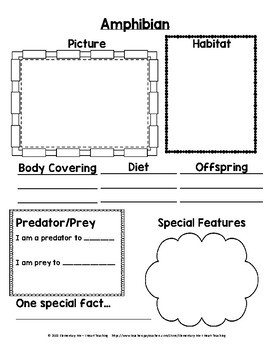 Animal Research Packet and Report - NO PREP!!