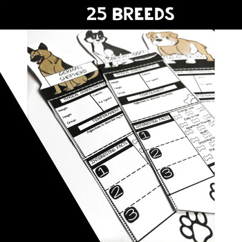 Animal Research Project - Dog Breed Poster
