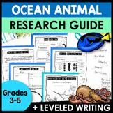 Animal Research Report Template   Ocean Animals