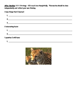 Animal Research Project (Reading integrated with science)