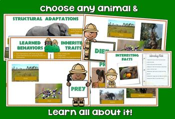 Animal Research Project GOOGLE CLASSROOM digital activity