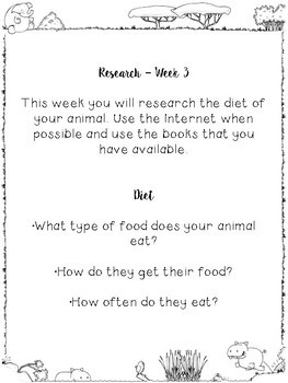 Animal Research Project/Report