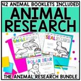 Animal Research Report Bundle